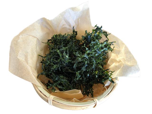 天草産 海藻 あおさ 1袋(10g) お試しサイズ 小袋 健康 栄養 βカロテン ミネラル ビタミン 2021年初出荷 新物あおさ