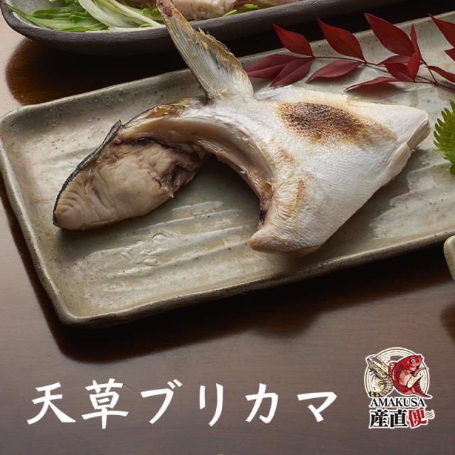 ブリカマ単品(冷凍)