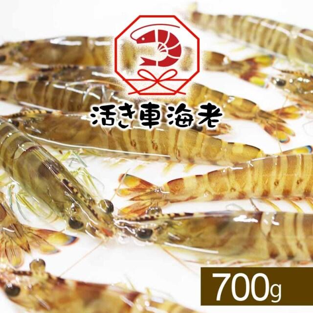 <水産物応援商品SU00005>送料無料 活き車海老700g(28-38尾入り)