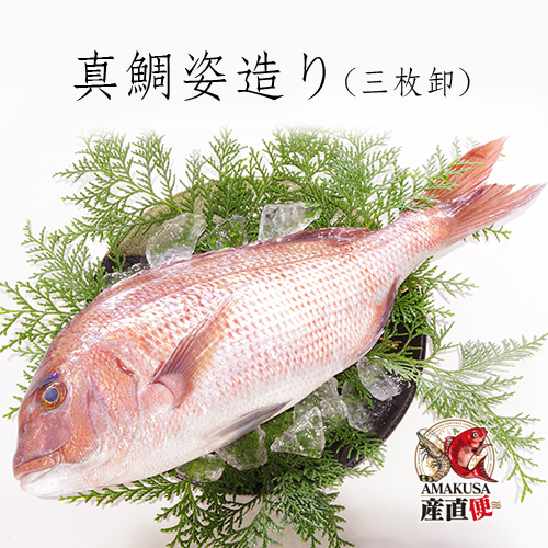 真鯛姿造り1尾・約1kg(皮付き/ウロコなし・尾頭付き・三枚おろし) 【送料無料】