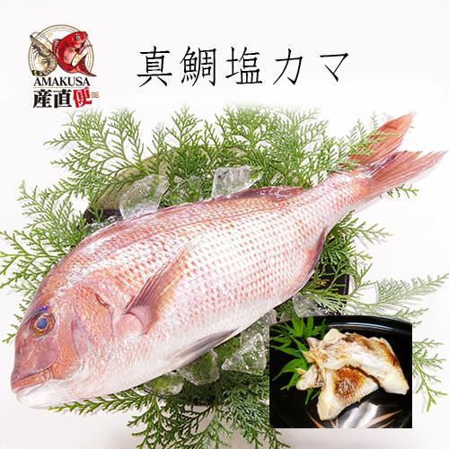 真鯛塩カマ100g(冷凍)