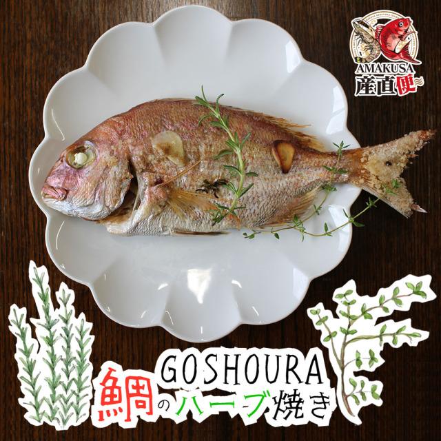 GOSHOURA 鯛のハーブ焼き 送料無料