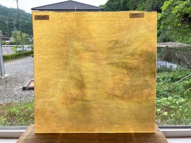 ヤカゲニー 5002SPi