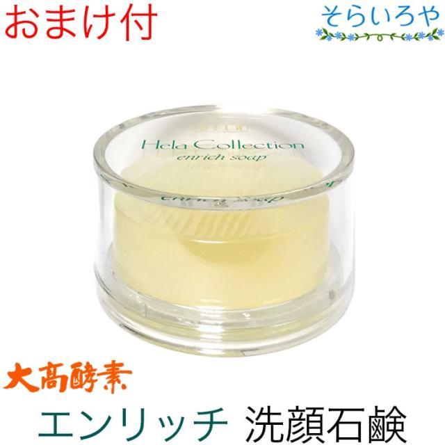 大高酵素 エンリッチソープ 100g(ケース付) (枠練り石けん)