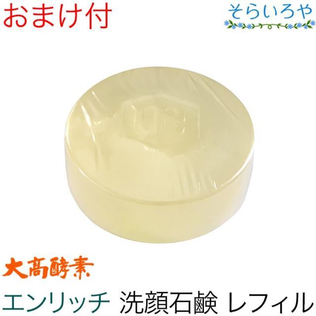 大高酵素 エンリッチソープ 100g(レフィル) (枠練り石けん)