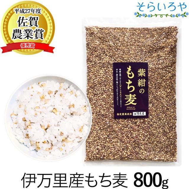 もち麦 国産 (佐賀県産) 「紫紺のもち麦」800g 令和2年産 紫もち麦 ダイシモチ100% ダイエット