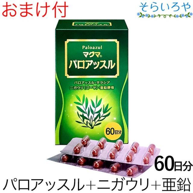 マグマ パロアッスル 120カプセル 日本薬品開発株式会社