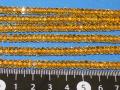 シトリン 平カット 5ミリ×2.5ミリ