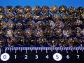 スモーキークオーツ(茶水晶)  10ミリ 爆裂