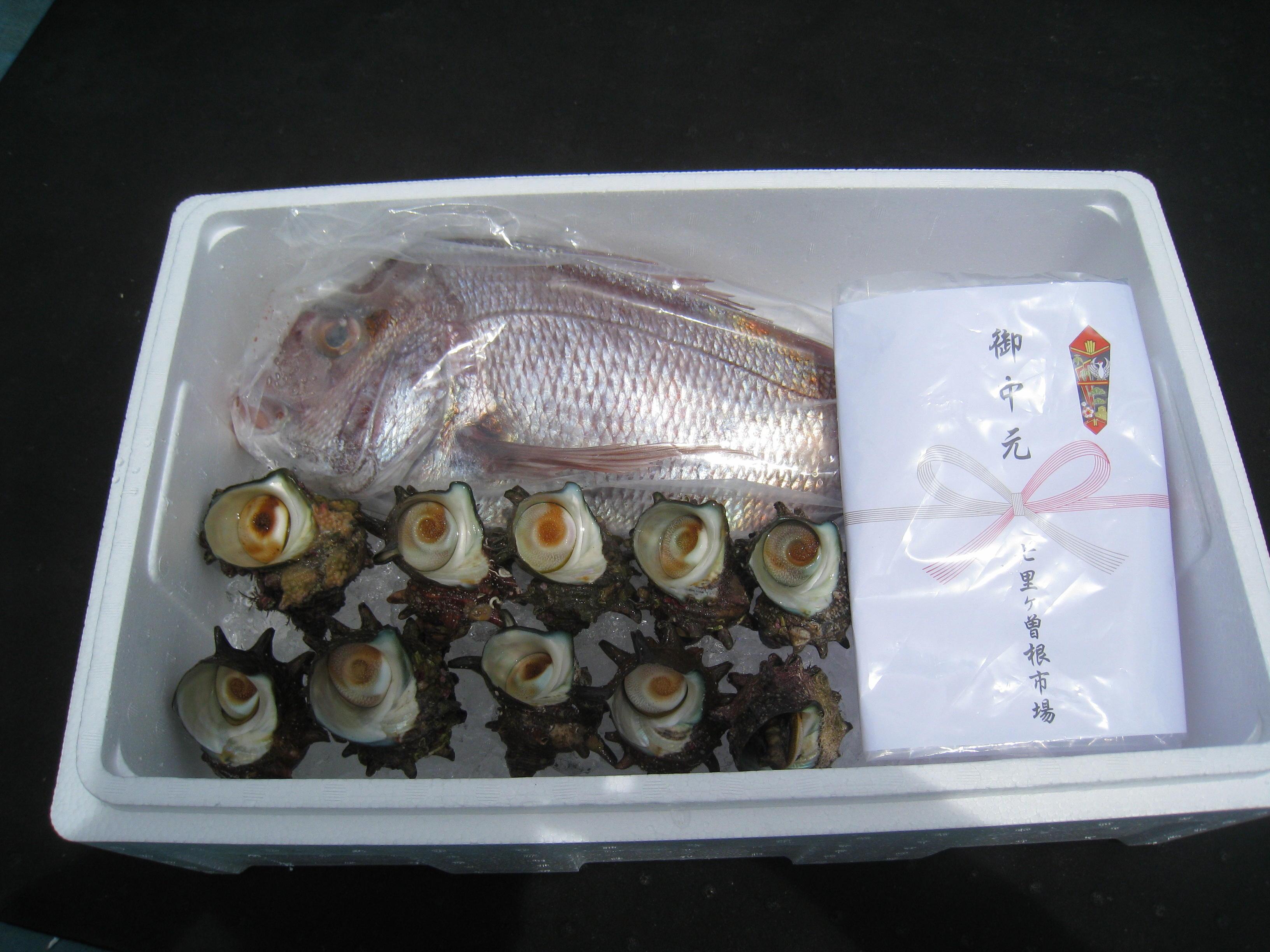 鮮魚ギフト-F