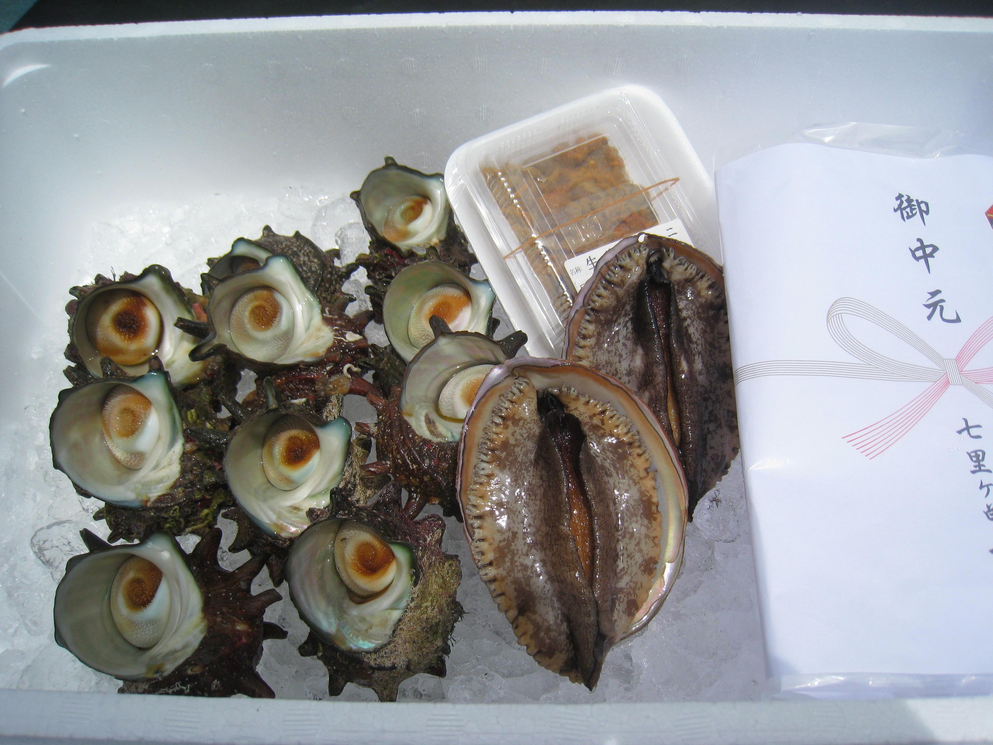 鮮魚ギフト-E