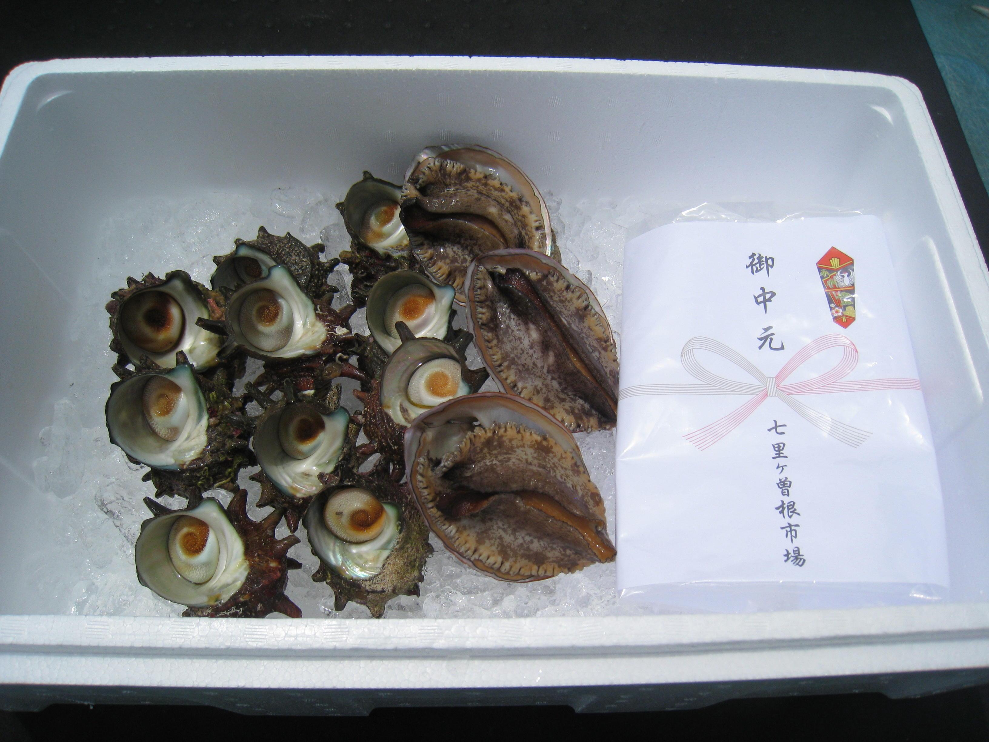 鮮魚ギフト-D