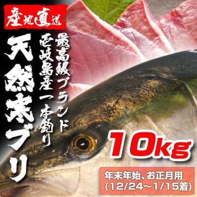 壱岐一本釣りブリ10k (年末年始12/24〜1/15着)