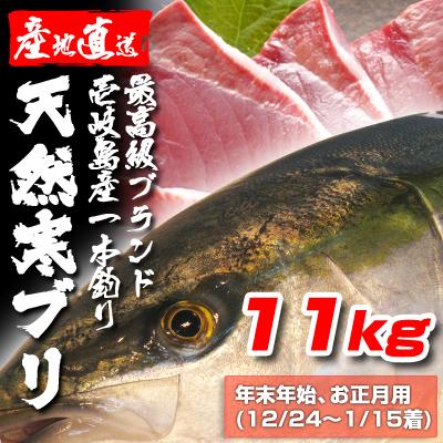 壱岐一本釣りブリ11k (年末年始12/24〜1/15着)