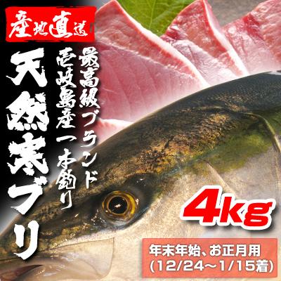壱岐一本釣りブリ4k  (年末年始12/24〜1/15着)