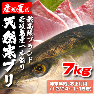 壱岐一本釣りブリ7k (年末年始12/24~1/15着)