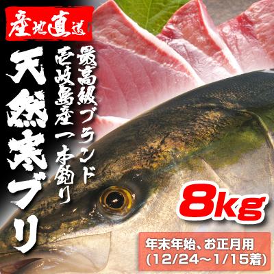 壱岐一本釣りブリ8k (年末年始12/24〜1/15着)