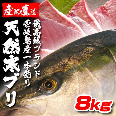 壱岐一本釣りブリ8k