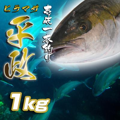 壱岐一本釣ヒラマサ(1k) 30%OFF