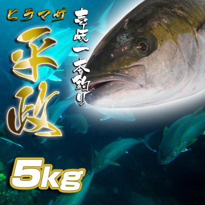 壱岐一本釣りヒラマサ5k 30%OFF