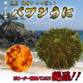 壱岐産バフンウニ (かきおとし)100g