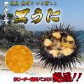 壱岐産 黒ウニ(かきおとし)100g