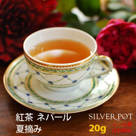 【送料無料】[紅茶]ネパール 夏摘み 2018年ジュンチヤバリ茶園HRHT Summer Wonder(20g)