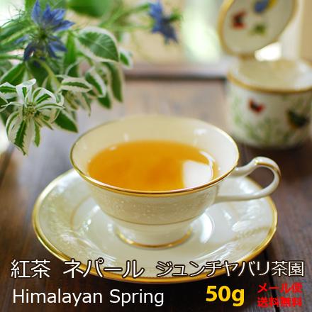 ネパール・ジュンチヤバリ茶園HimalayanSpring