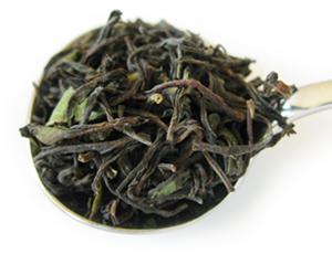 ニルギリ・カイルベッタ茶園