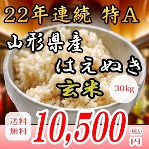 28年産山形県産はえぬき!30kg玄米!!送料無料!九州・沖縄・一部離島は配送圏外。