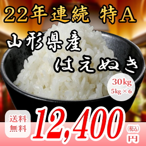 28年産山形県産はえぬき!30kg白米!!送料無料!九州・沖縄・一部離島は配送圏外。