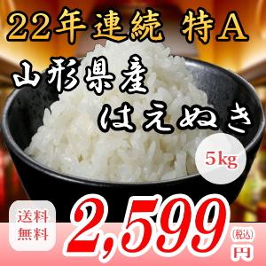 28年産山形県産はえぬき!5kg白米!!送料無料!九州・沖縄・一部離島は配送圏外。