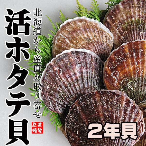 12月10日より北海道産 活ほたて貝【2年貝】 8.0kg (送料込)