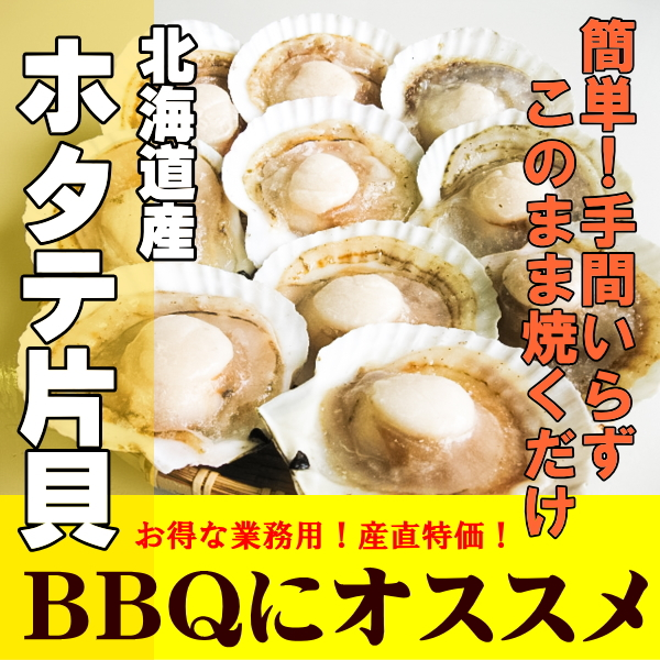 北海道産 産直特価!ほたて片貝 10枚セット×10袋【まとめ割】