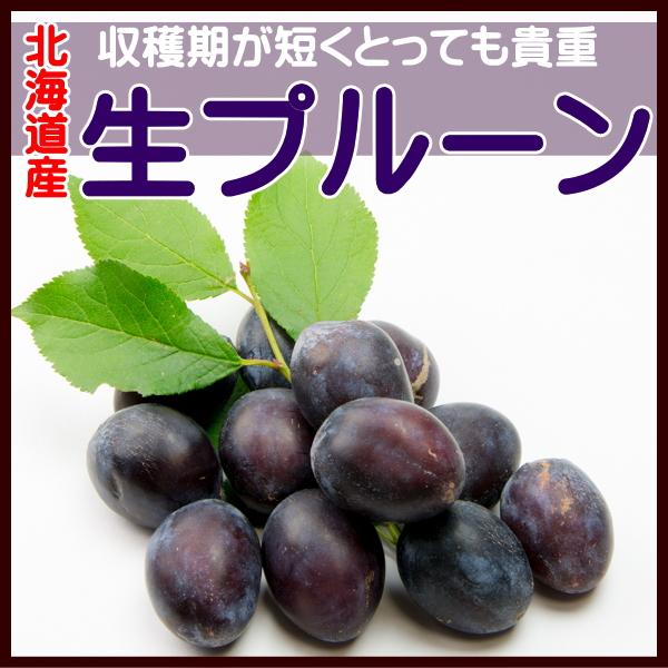貴重な北海道産 生プルーン 2kg 予約販売 10月発送