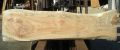 AE-126 楠木(くすのき)看板素材 ■売却済み