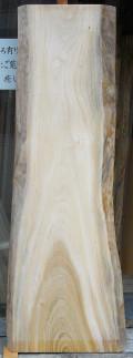 AG-382 楠木(くすのき)看板材