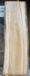 AG−384 楠木(クスノキ)材