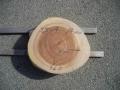 SS−4 楠木輪切り素材■売却済み