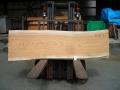 kb-1 欅の天板材  ■売却済み