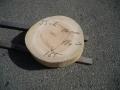 SS−6 楠木輪切り素材■売却済み