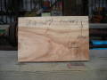 BG-59 楠木(くすのき)の看板素材■売却済み