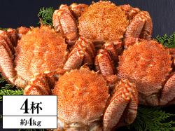 超特大!!北海道浜茹で毛がに姿 4杯(約4kg)