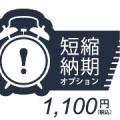 短縮納期オプション¥1100【S70PRE003】
