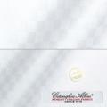 メンズパターンオーダーシャツ イタリア製 ALBINI ホワイト格子柄ドビー 【S71EXM005】