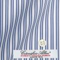 ●レディースパターンオーダーシャツ(ベーシック) イタリア製 ALBINI 白場ブルーマルチストライプ 【S72EXM015】
