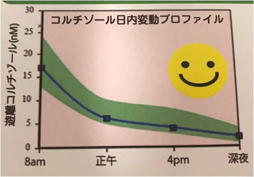 副腎ストレス指数検査