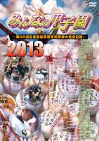 みんなの甲子園2013