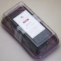 デルタ 枝付き干しぶどう(ケーキ箱タイプ) 90g×10個