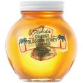 フロリダ オレンジハチミツ(巣無し) 227g×24個